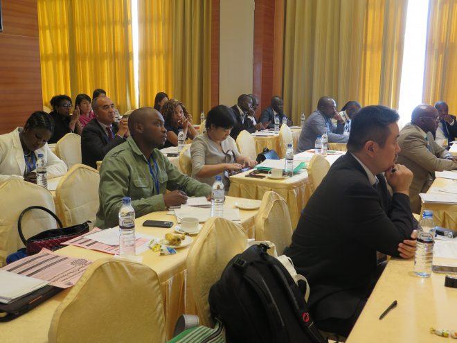 アフリカにおけるSDGsと「アジェンダ2063」達成に向けたパートナーシップ =国連SDGsハイレベル政治フォーラム(7月、ニューヨーク)とTICAD VIフォローアップ閣僚会合(8月、モザンビーク):アフリカと日本の市民社会は何を語ったか=