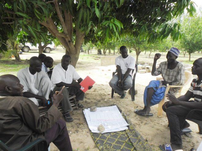 【11/29開催】NGO駐在員が見た、セネガルの農村と暮らし:循環型農業プロジェクト報告会@神戸