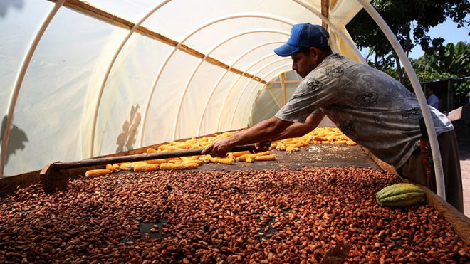 【10月1日(月)開催】世界銀行セミナー「食糧の未来:農業バリューチェーンにおける開発資金の最大化のために」