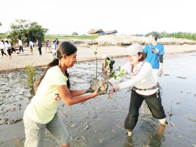 【募集】マングローブ植林ワークキャンプと日本語ボランティア in スンバ島