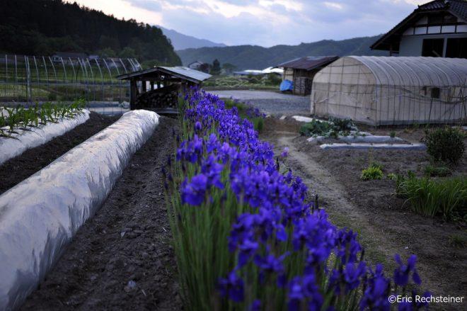 世界の医療団日本、相双に新しい精神科医療保健福祉システムをつくる会 過去7年間の「福島こころのケアの実践と教訓」を発表
