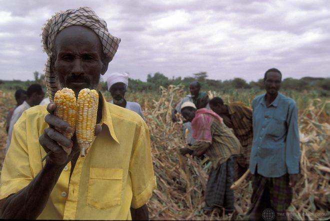 【8月28日(水)開催】TICAD7 公式サイドイベント「アフリカの食糧安全保障:都市化と気候変動の観点から」