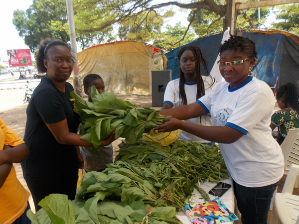 【TICADサイドイベント】西アフリカの農業における子ども・若者の権利実現のためのNGOと政府の連携