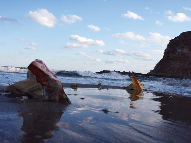 【11月13日(水)開催】国際シンポジウム:海洋ごみと海洋プラスチック問題解決に向けた課題とアプローチ