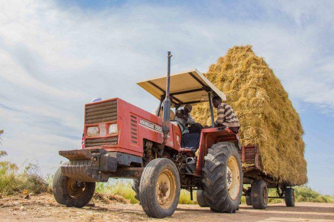 【12月9日(月)開催】世界銀行セミナー「繁栄の実現:農業におけるテクノロジーと生産性向上」