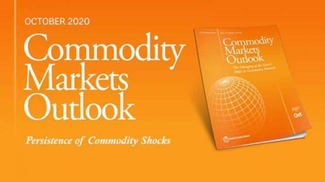 【11月20日(金)オンライン開催】世界銀行モーニングセミナー(第87回)「一次産品市場の見通し 2020年10月版」