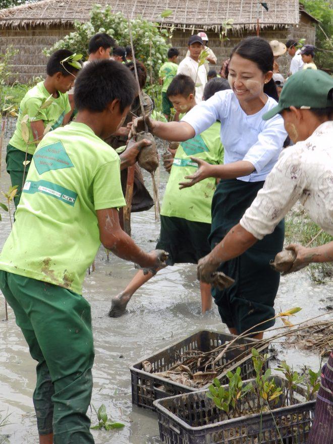 ミャンマーから学ぶ国際協力 第6弾「校舎を守る緑の壁:ミャンマー『学校マングローブ防風林』植林事業」