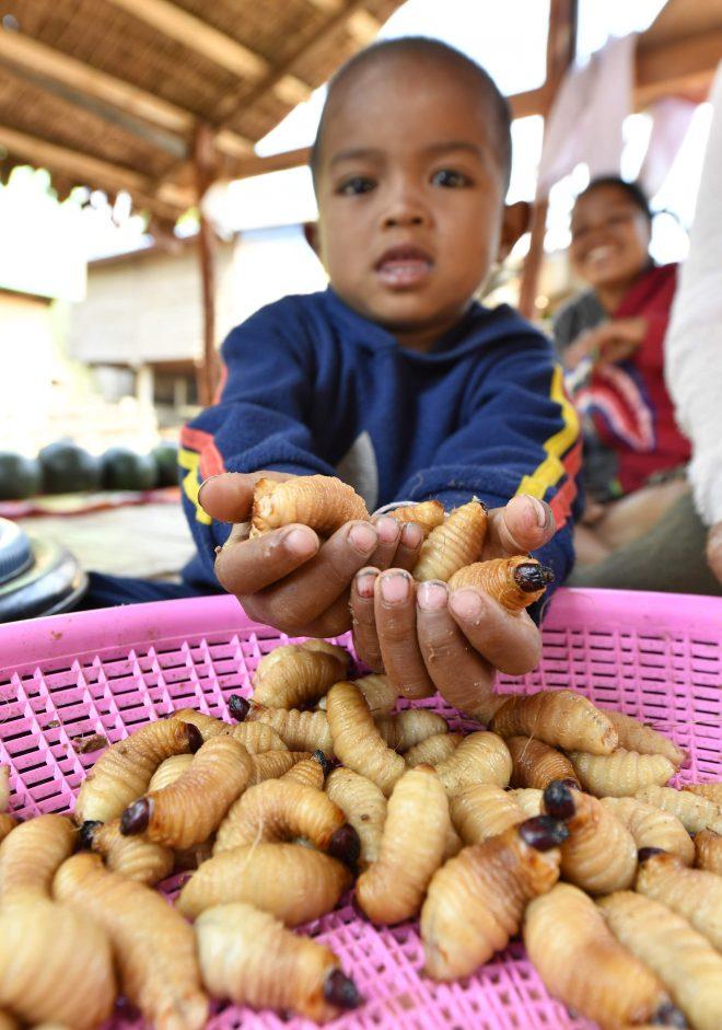 【助成金】味の素ファンデーション「食と栄養」国際協力支援プログラム(AIN)公募9月末〆